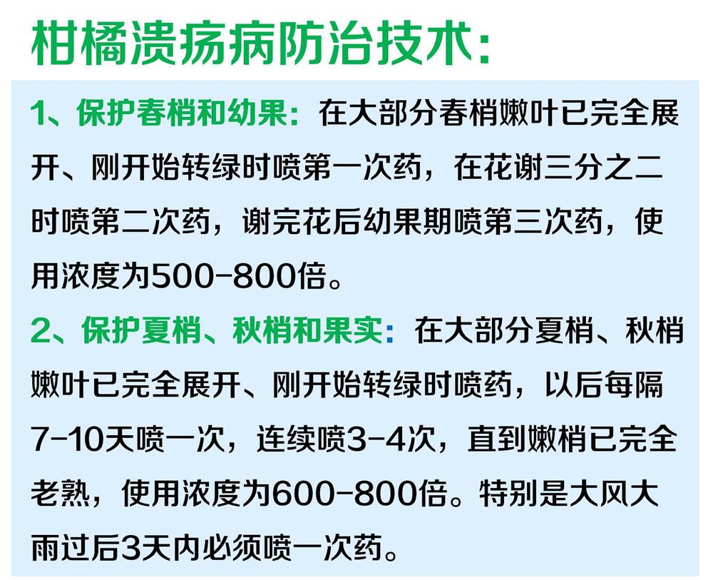 30%松脂酸铜商详图5.jpg