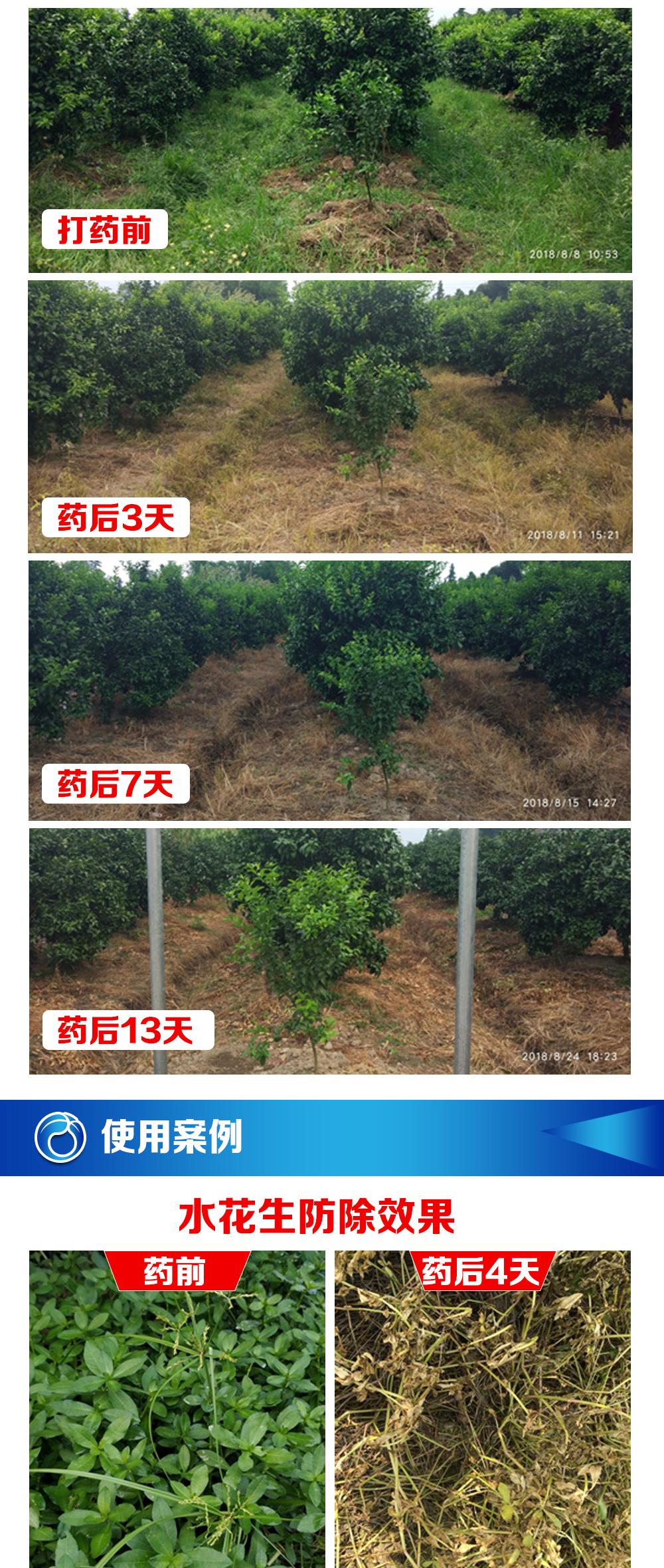 草铵膦新商详_03.jpg