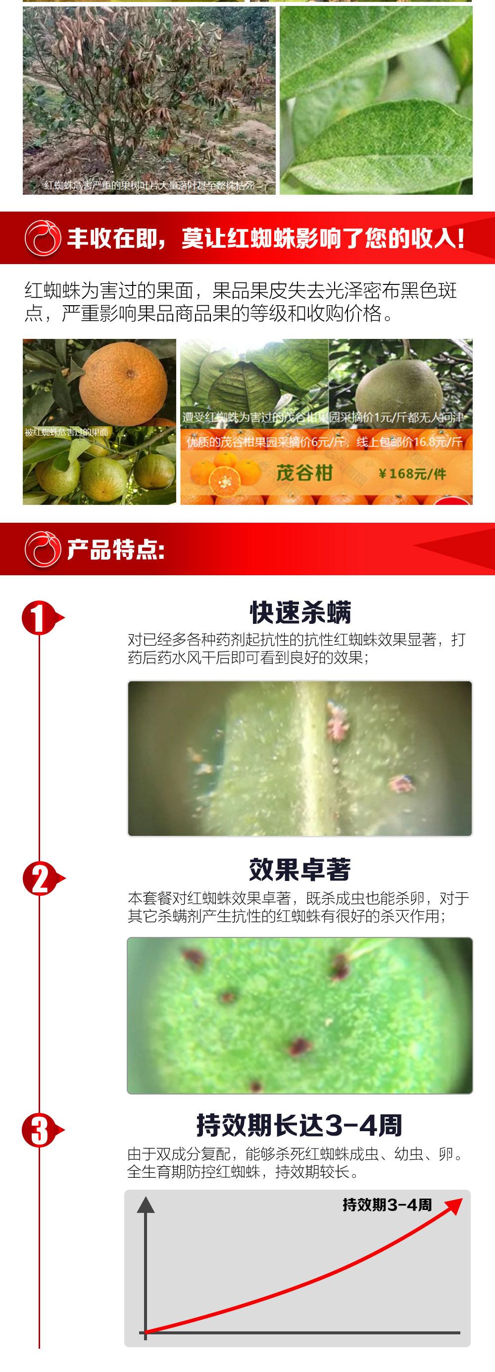 红蜘蛛快速杀灭商详_02.jpg