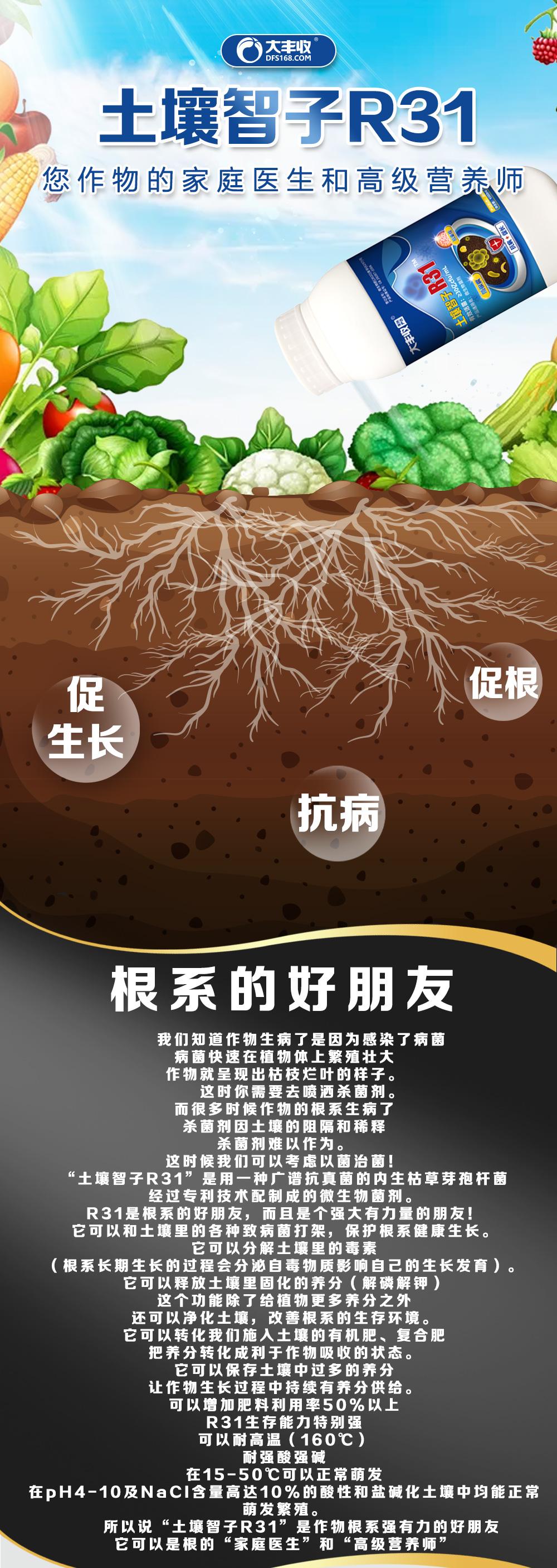 土壤智子-商祥2_01.jpg