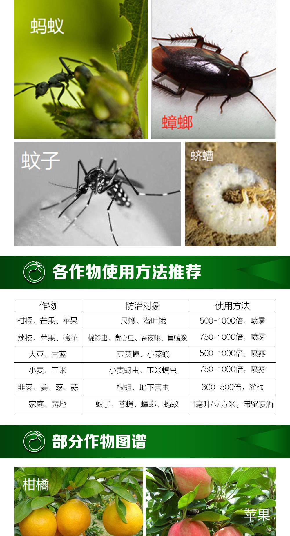 上海沪联红高氯4_04.jpg